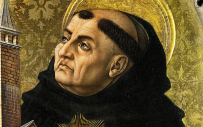 Presuppositional Ponderings after Reading Thomas Aquinas